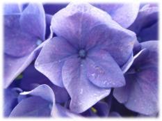 100311_2239_Spring5.jpg