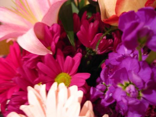 051412_1127_Flowers1.jpg